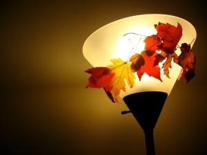 lamp+leaf=lovely